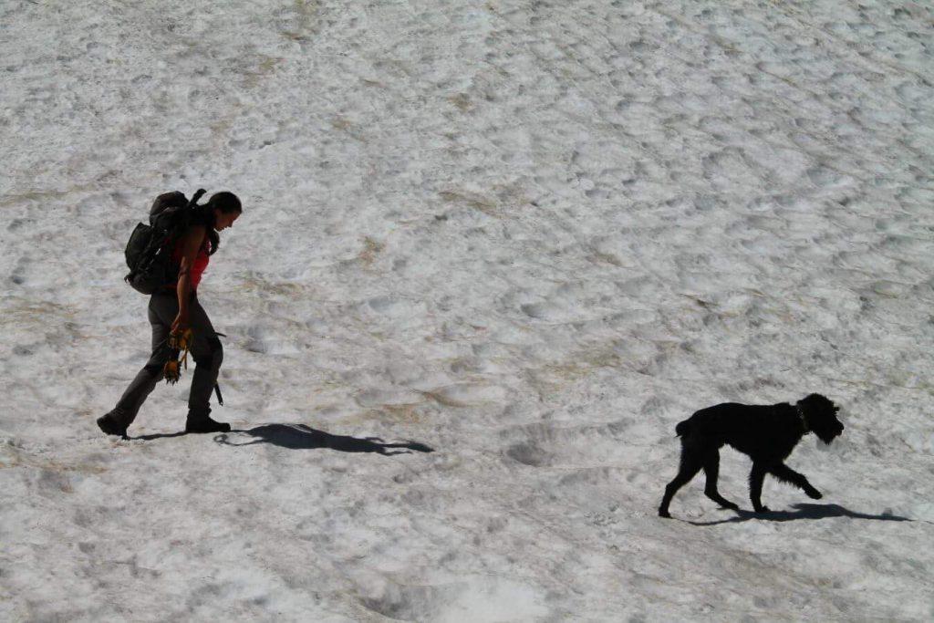 Nieve en el Meicín