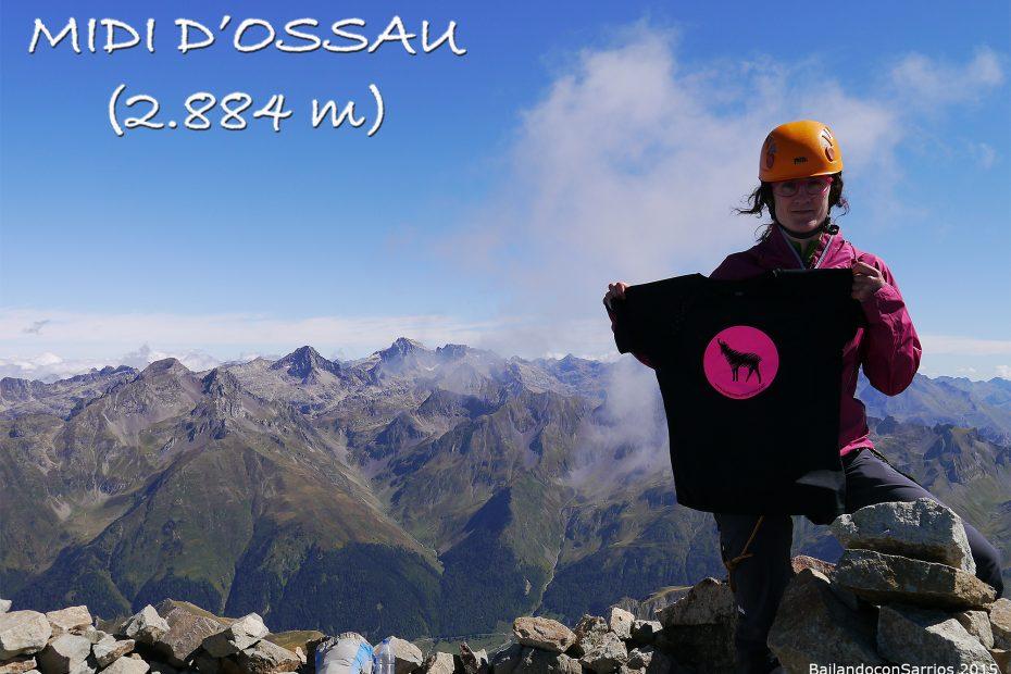Midi Dossau